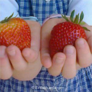 Obst richtig essen kann jeder